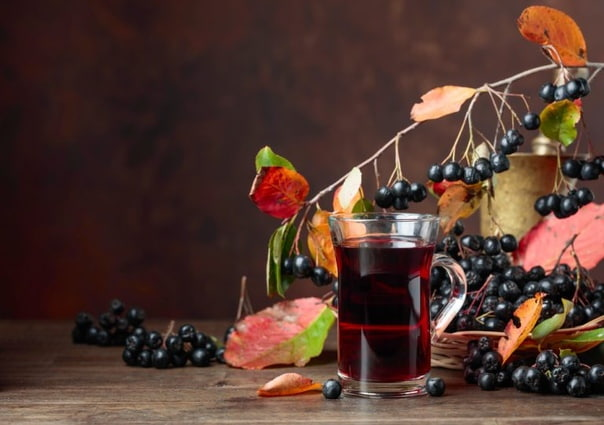 Как использовать ягоды черноплодной рябины