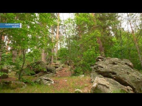 Рачейский бор претендует на статус природного парка
