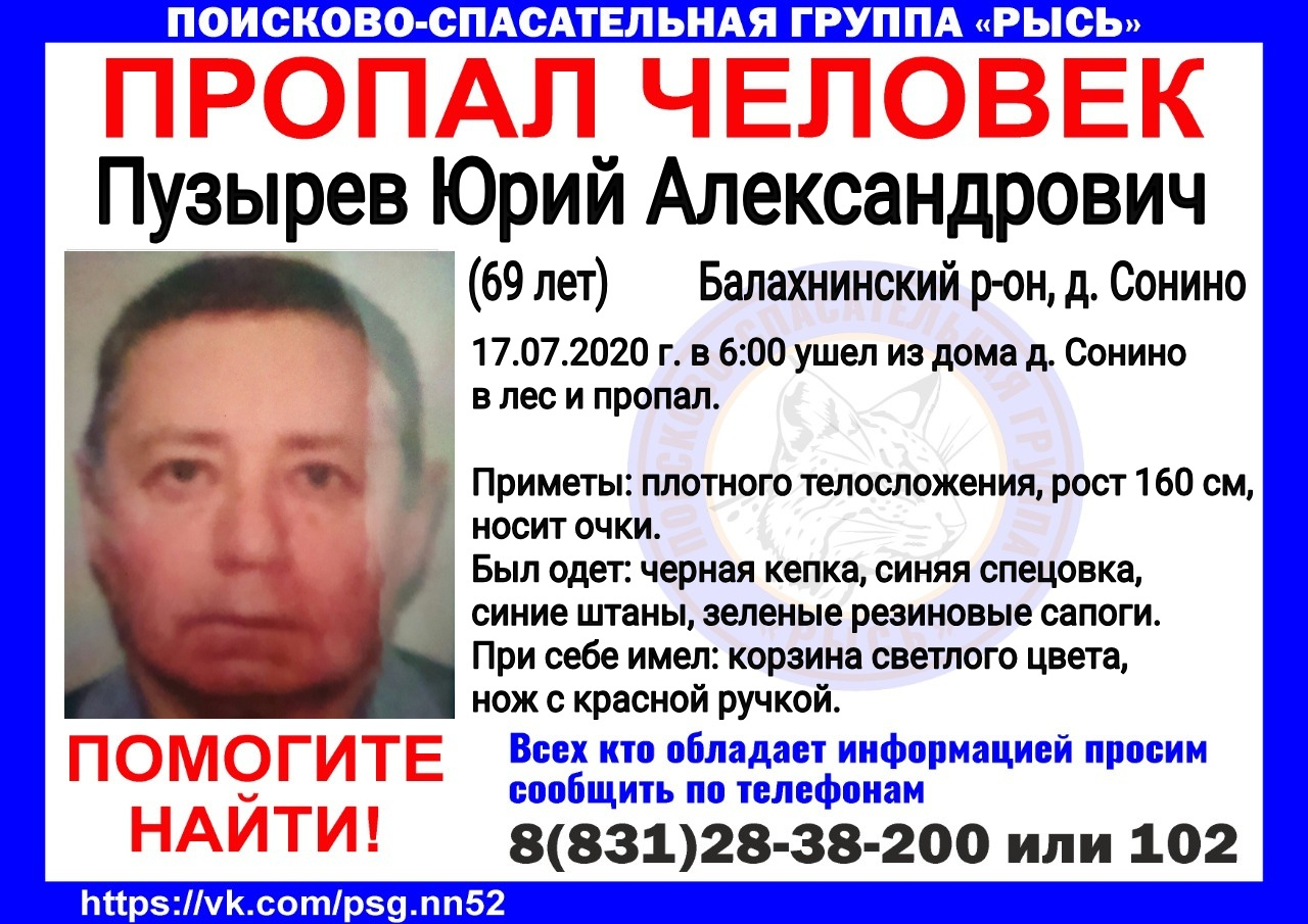 Пузырев Юрий Александрович, 69 лет, Балахнинский р-он, д. Сонино