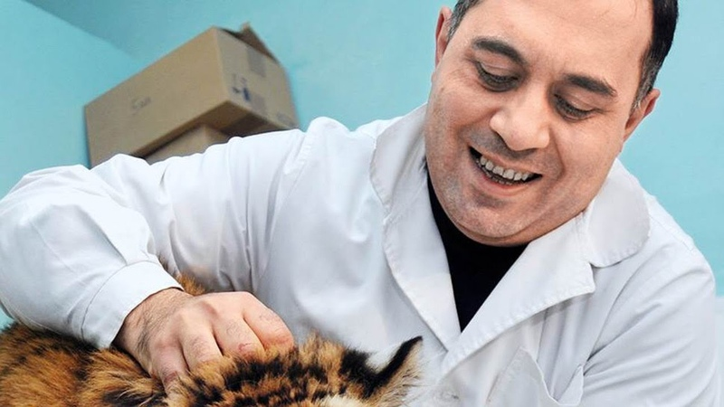 Прямой эфир с Кареном Даллакяном Спасение львенка в Дагестане Срочная поездка