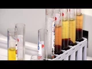 Ученые тестируют на себе вакцину от коронавируса, следующие - добровольцы
