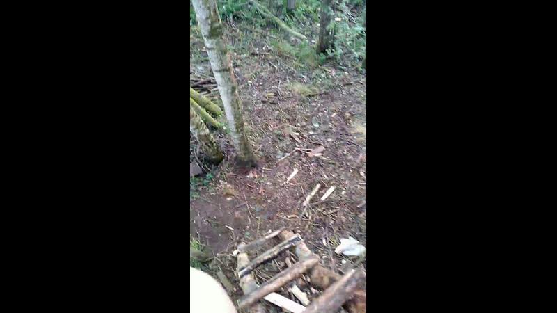 Строю дом на дереве 2