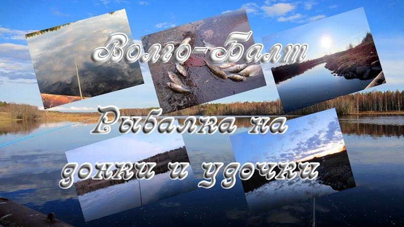 Волго Балт Рыбалка на донки и удочки