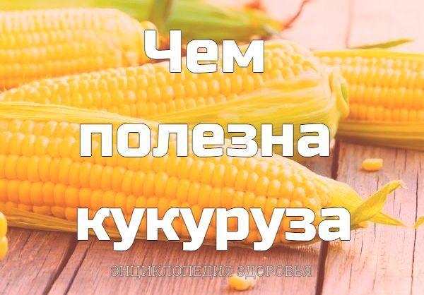 Чем полезна кукуруза.