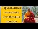 Вопросы По Тибетской Гормональной Гимнастике