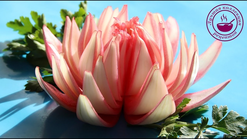 Лотос из лука Как сделать цветы из лука Карвинг из лука Carved Onion Lotus Flower Onion Flower