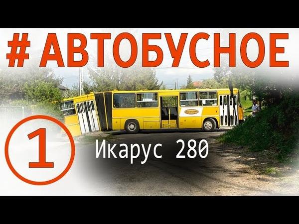 Автобус Икарус 280. Все о легендарных гармошках. Покатушки, история, модификации, эксклюзивы!