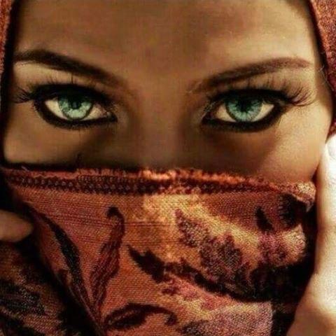 Мухаммед Али как-то, увидев свою дочь Хану в очень открытой одежде, сказал: - Хана, все ценное, что Бог сотворил в этом мире, укрыто и труднодоступно