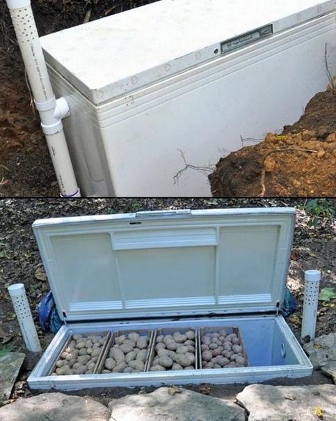 Не выбрасывайте старый ненужный холодильник, из него можно сделать овощехранилище на даче