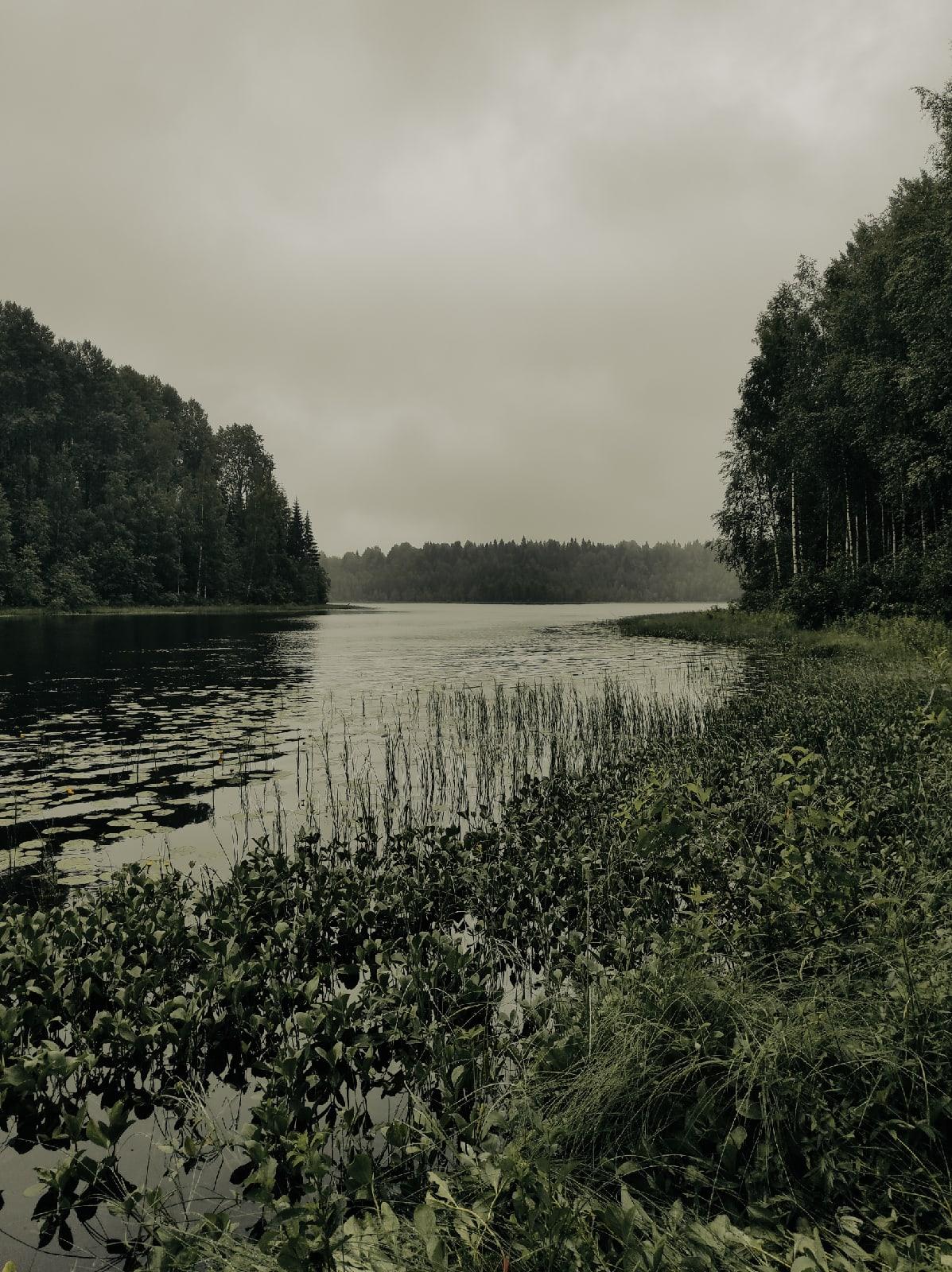 Ленинградская область, Подпорожский район - Фото