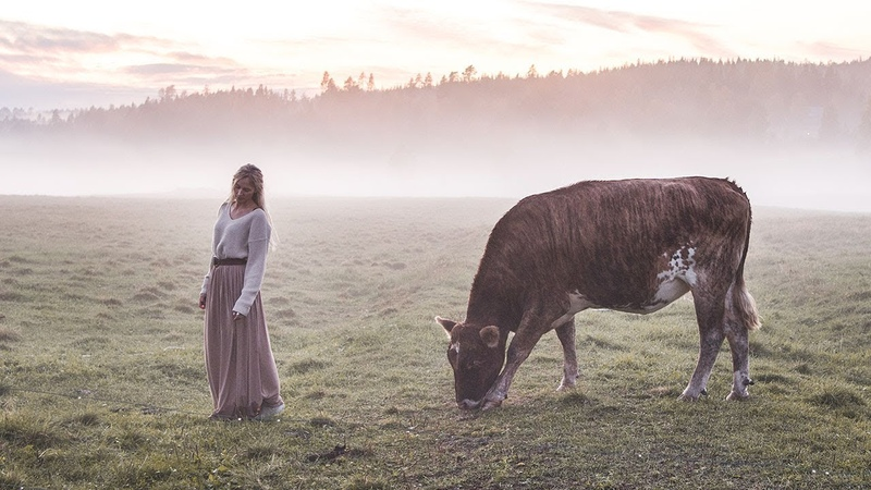 A farewell song for my cow Ancient Swedish Herdingcall