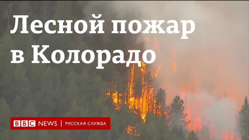 Лесной пожар в Колорадо самый большой в истории штата