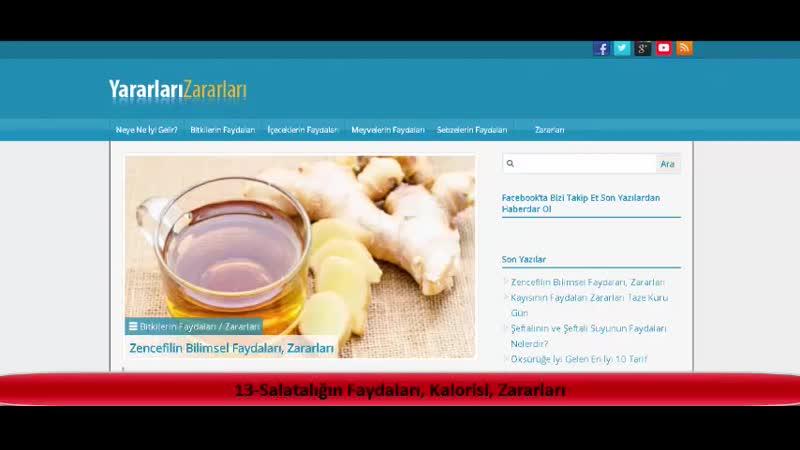 13 Salatalığın Faydaları Kalorisi Zararları