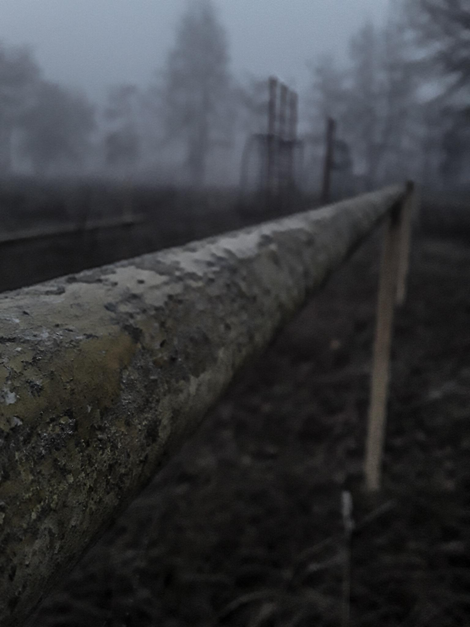 Брянская область - Фото
