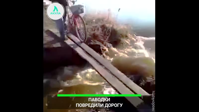Река размыла дорогу   АКУЛА