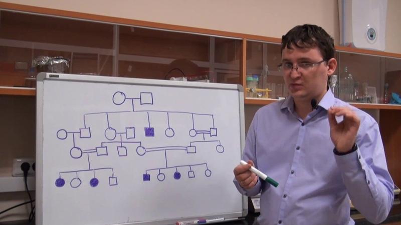 Анализ родословных Урок 4 Задача 7 2 быстрый разбор в конце видео