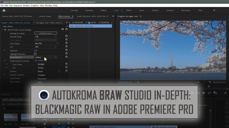 BRAW Studio In Depth Using Blackmagic RAW in Adobe Premiere Pro