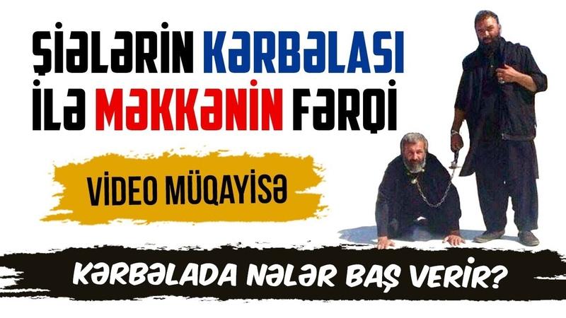 Şiələrin Kərbəlası ilə Məkkənin fərqi. Video müqayisə. Kərbəlada nələr baş verir? (2-ci hissə)