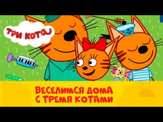 Смотрим дома: Три кота на CTC Kids (21-30 серии)