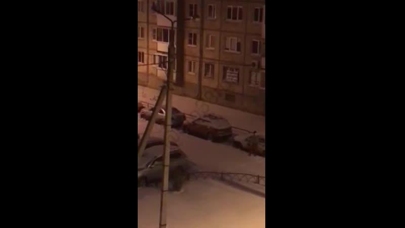 В Иркутске мужчина с котом на плече почистил от снега все машины соседей