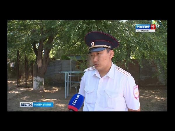 К юбилею кинологической службы полиции
