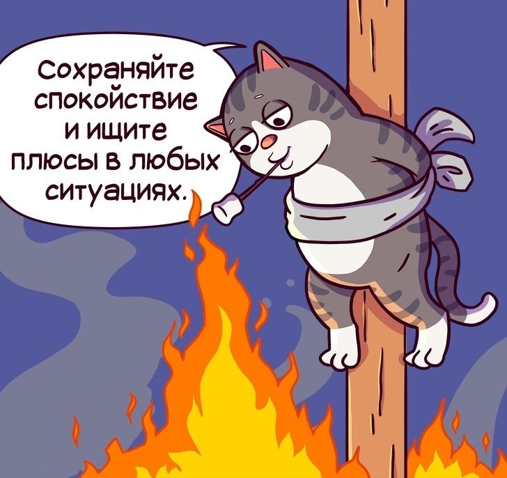 Простые правила жизни котика по имени Семен!