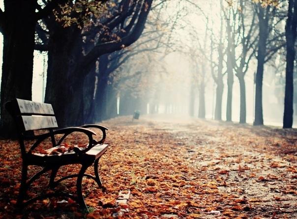 Успеть набыться вместе В парке было шумно и многолюдно. Я сидела на лавочке и смотрела на стоящее впереди меня дерево, пытаясь сосчитать сколько листьев уже успело попасть под кисть невидимого