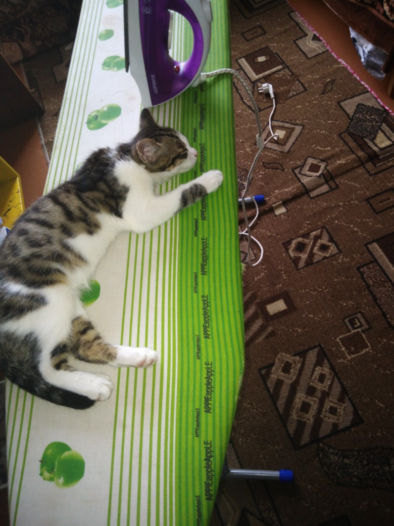 Вот так и спим♥