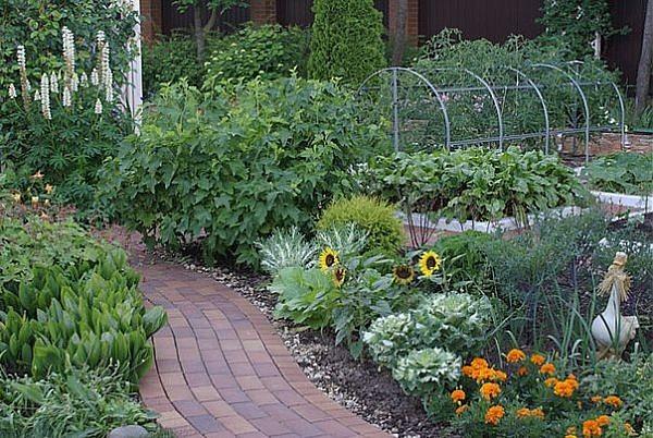 Огород - это три в одном: солярий, фитнес, тренажерный зал 15 шагов для белой зависти соседей:1. Сделай специальную бочку для сбора дождевой воды и используй ее для полива растений.2. Убивай