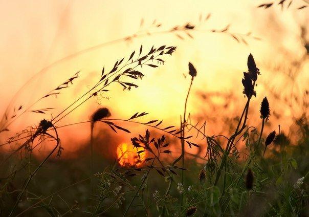 В молодом человеке горит огонь, в старом человеке светит свет Надо уметь, пока горит огонь гореть; но когда прошло время горения суметь быть светом. Надо в какой-то момент жизни быть силой, а в