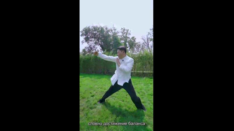 Кулак Великого Предела Тайцзицюань