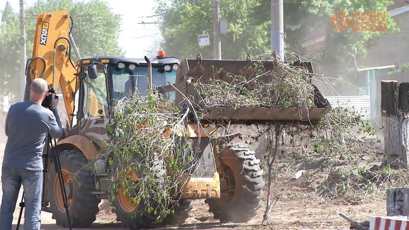 В оренбургской мэрии прокомментировали вырубку деревьев