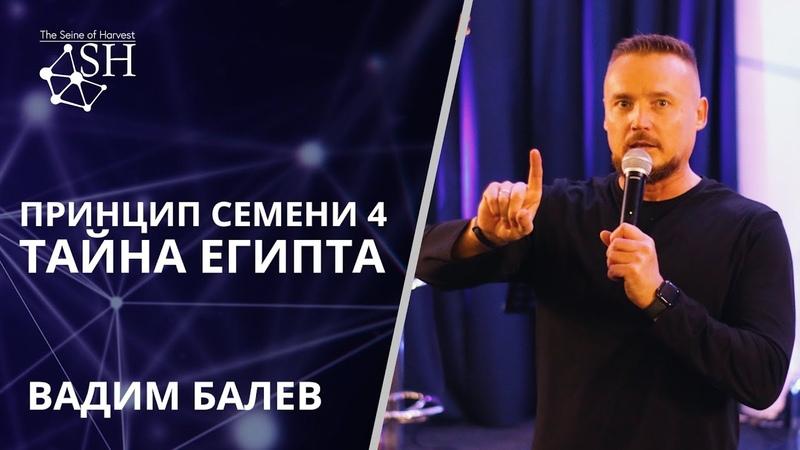 Принцип семени 4 Тайна Египта Вадим Балев Киев 22 2 2020