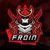 FROIN eSports