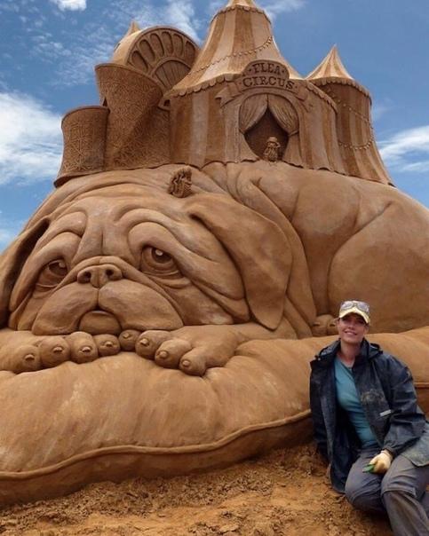 Работа, сделанная из песка (источник: gofazenda)