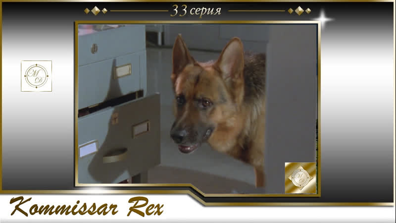 Komissar Rex 3x04 Комиссар Рекс 33 серия