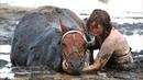 Конь уходил на дно трясины… Наездница не могла помочь, но обняла его и оставалась рядом