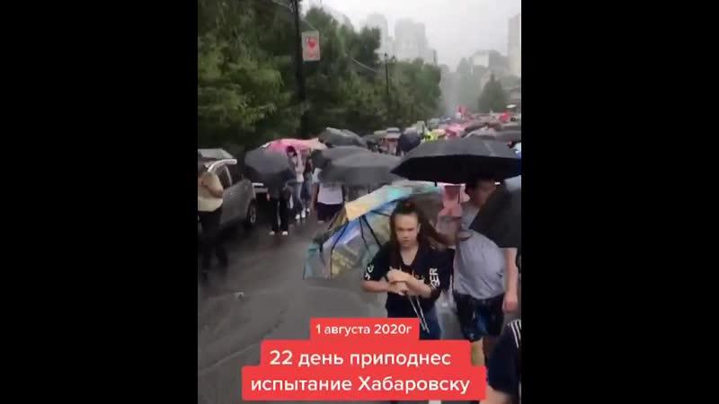 Хабаровск против течения