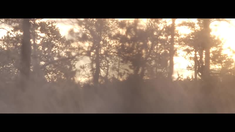 MARIANAS REST - South Of Vostok (Official Video) _ Napalm Records