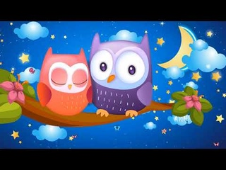 Owl lullaby. Relaxing and Soothing Baby Sleep Music.  Good Night, Sweet Dreams!