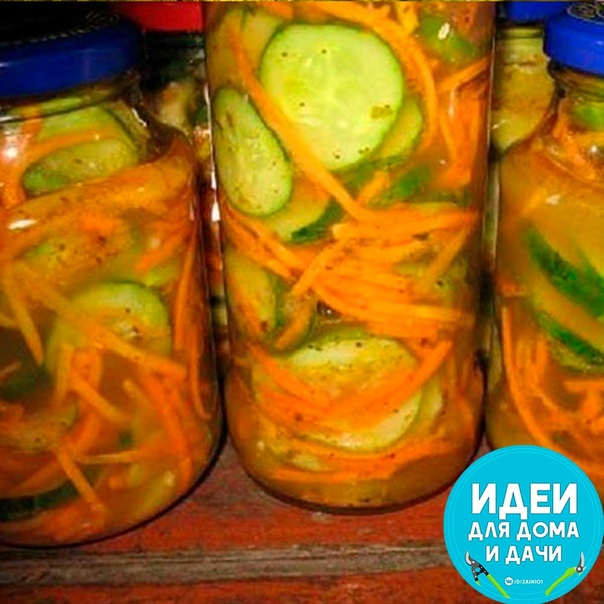Огурцы по корейски на зиму Такой салат на зиму можно сделать как с молодых огурчиков, так и с переросших. Переросшие огурцы в этом случае нужно почистить. Ингредиенты: Огурцы 2 кг Морковь 500 гр