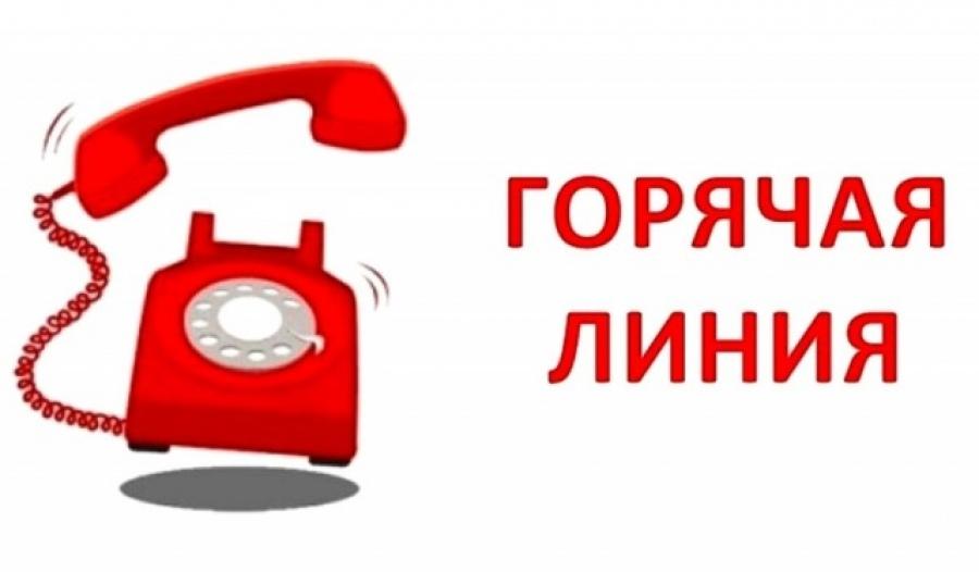 «Горячая линия» по вопросам организации питания  в МБОУ «Чамеровская СОШ»